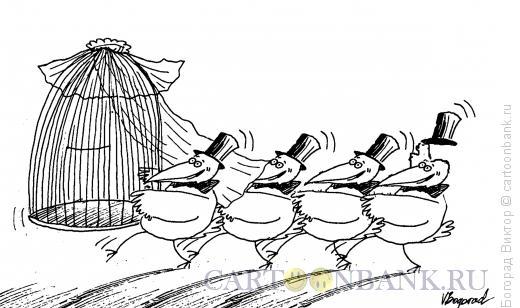 Карикатура: Жених и невеста, Богорад Виктор