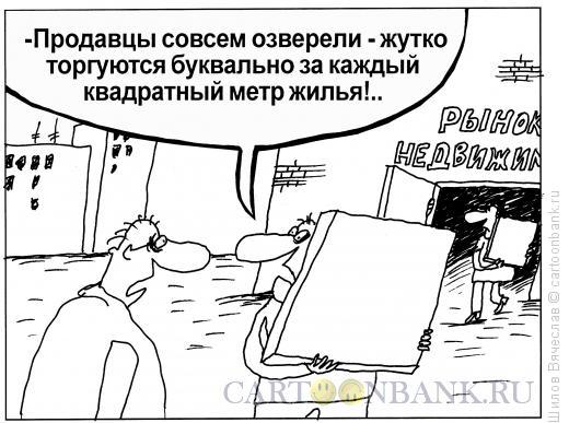 Карикатура: Квадратный метр, Шилов Вячеслав