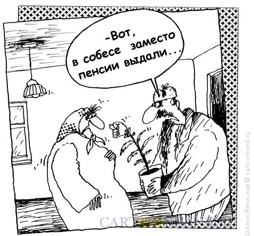 Карикатура: Цветок, Шилов Вячеслав