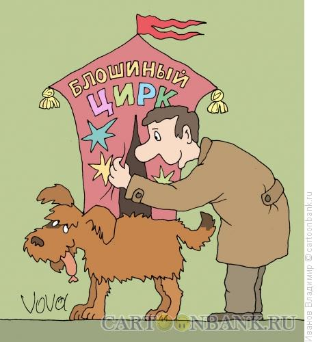 Карикатура: Блошиный цирк, Иванов Владимир