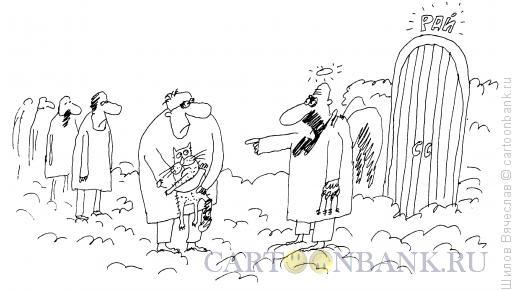 Карикатура: Кот в раю, Шилов Вячеслав