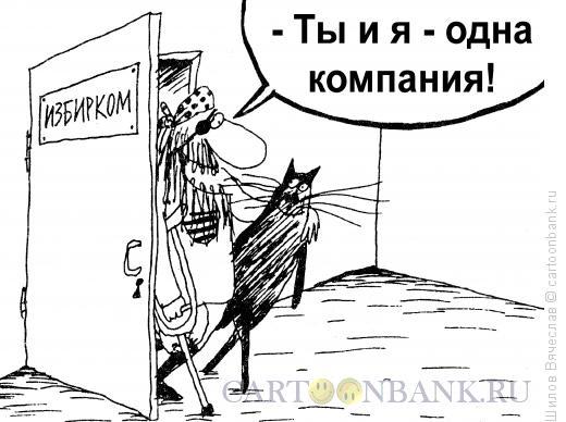 Карикатура: Кот и Пират, Шилов Вячеслав