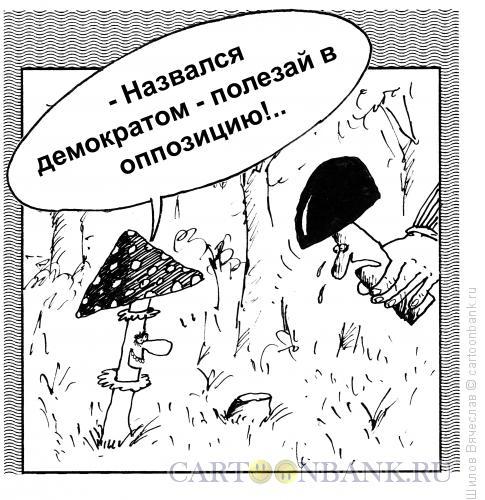 Карикатура: Из жизни грибов, Шилов Вячеслав