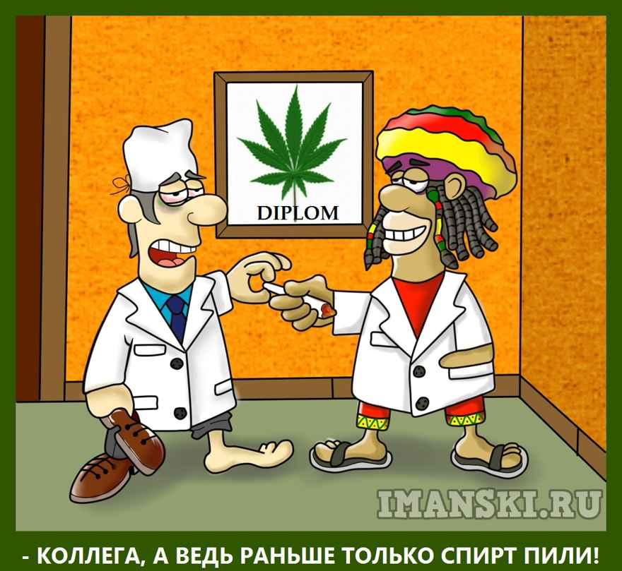 Карикатура: Что будет если разрешат марихуану в медицинских целях, Игорь Иманский
