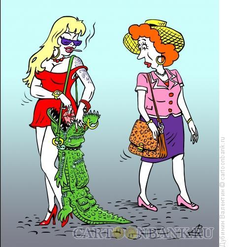 Карикатура: Сумочка, Дубинин Валентин