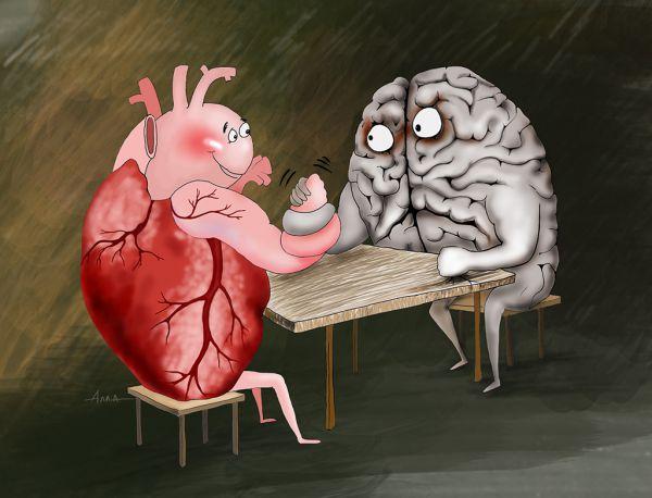 Карикатура: спор, Алла Сердюкова