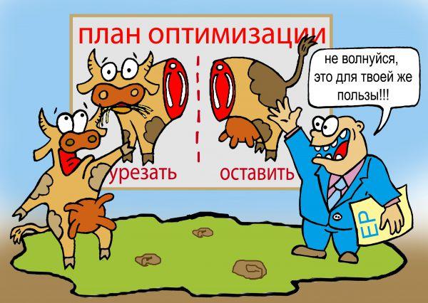 Карикатура: оптимизация, Ганов Константин