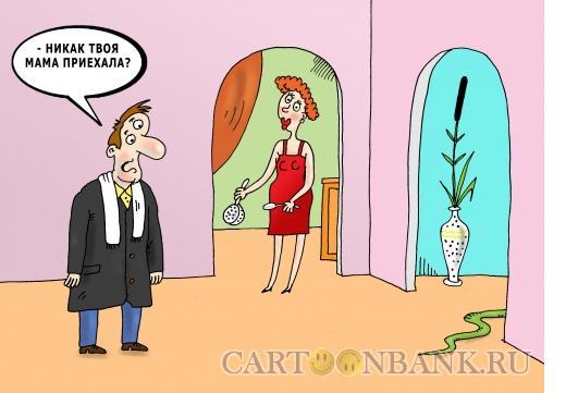 Карикатура: Теща в доме, Тарасенко Валерий