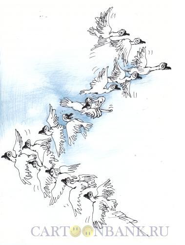 Карикатура: Верный путь, Дергачёв Олег