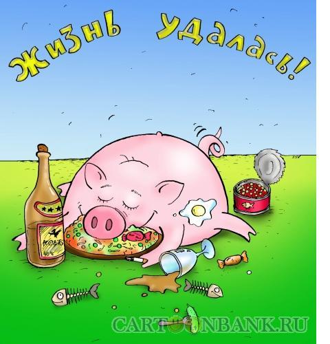 Карикатура: жизнь удалась, Соколов Сергей