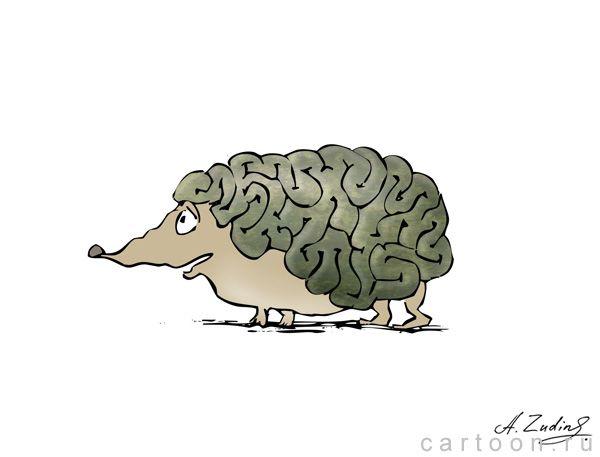 Карикатура: Умный ёжик, Александр Зудин
