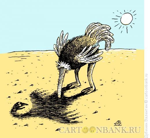 Карикатура: Страус и тень, Дубинин Валентин