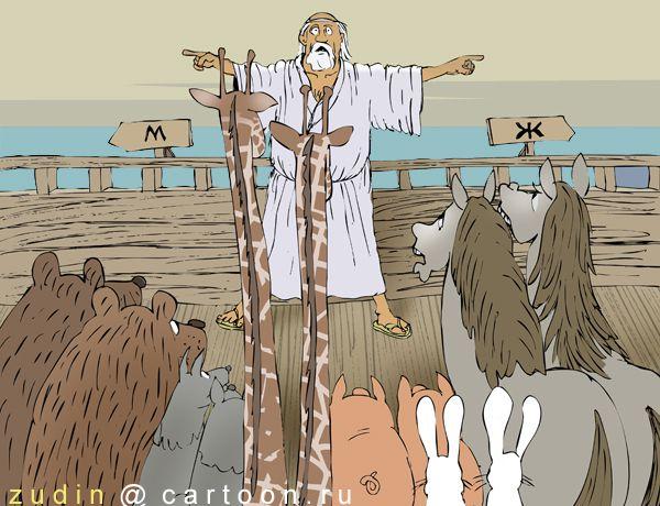 Карикатура: Размежевание, Александр Зудин