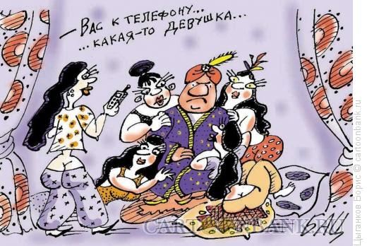 Карикатура: В гареме, Цыганков Борис