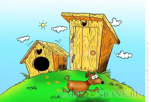 Карикатура: Собака и сортир, Соколов Сергей