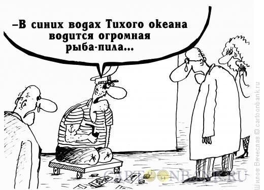 Карикатура: Рыба-пила, Шилов Вячеслав