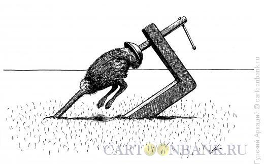 Карикатура: страус и струбцина, Гурский Аркадий