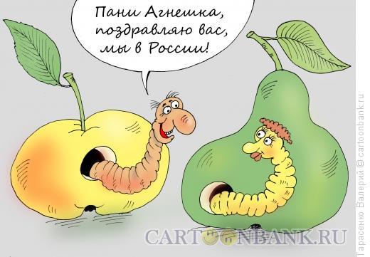 Карикатура: Санкционный импорт, Тарасенко Валерий