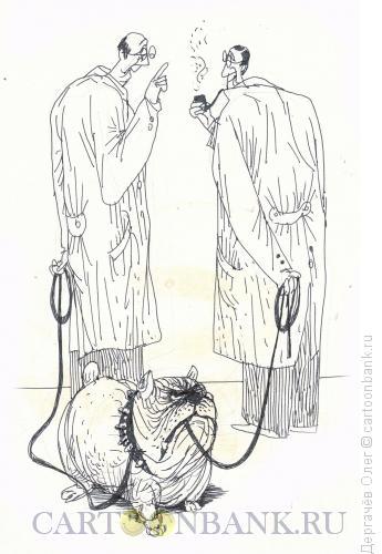 Карикатура: Прогулка с собаками, Дергачёв Олег