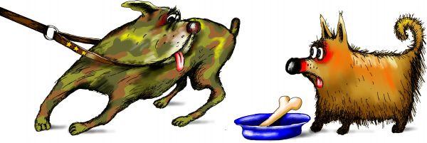 Карикатура: собаки, Ануфриев
