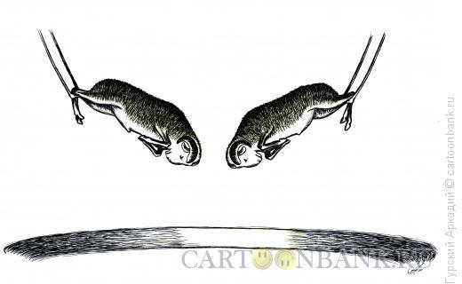 Карикатура: бараны, Гурский Аркадий