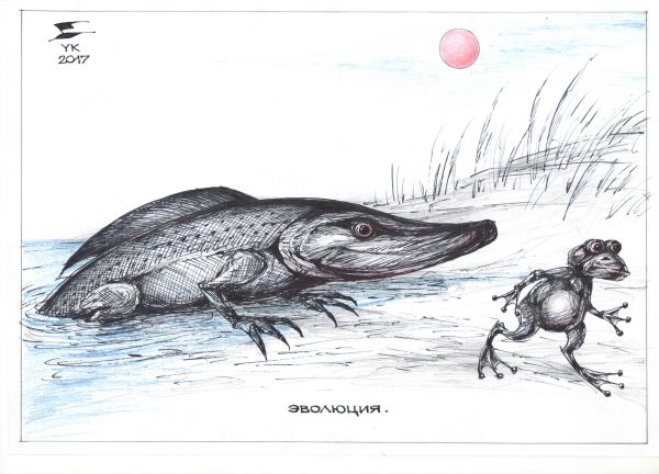 Карикатура: Эволюция . Щука выходит на сушу ., Юрий Косарев