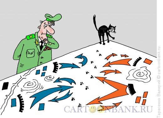 Карикатура: Провал стратегии, Тарасенко Валерий