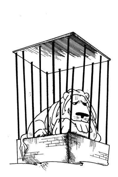 Карикатура: аномалия-2, Kapry