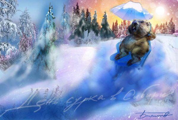 Карикатура: ДЕНЬ СУРКА в Сибири, Багринцев И