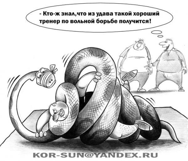 Карикатура: Удав, Сергей Корсун