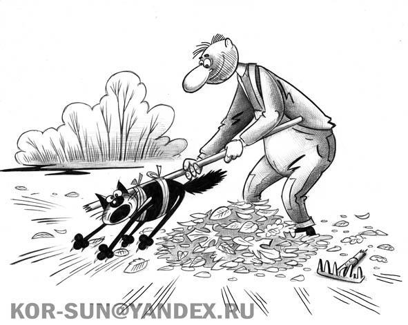 Карикатура: Грабли, Сергей Корсун