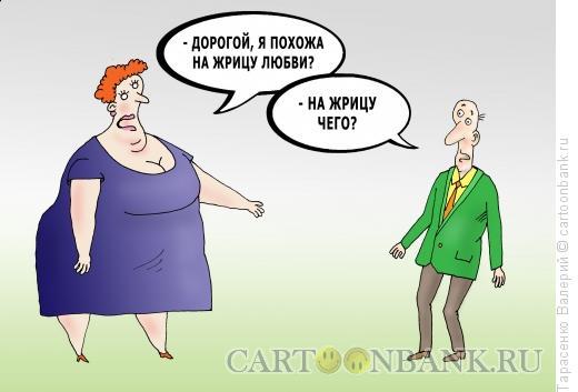 Карикатура: Жрица в теле, Тарасенко Валерий