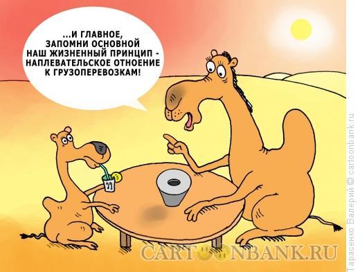 Карикатура: Плевое дело, Тарасенко Валерий