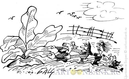 Карикатура: Репка, Цыганков Борис