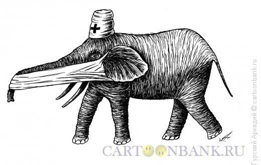 Карикатура: слон-врач, Гурский Аркадий