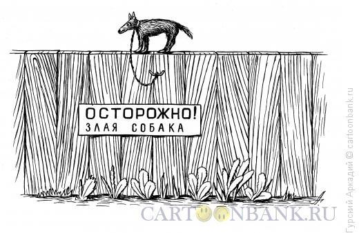 Карикатура: собака на заборе, Гурский Аркадий