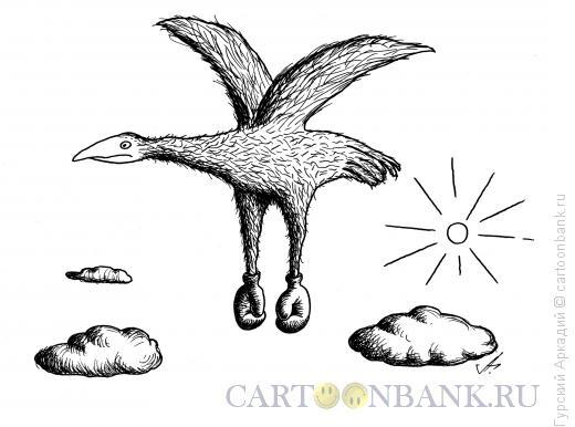 Карикатура: птица-боксёр, Гурский Аркадий