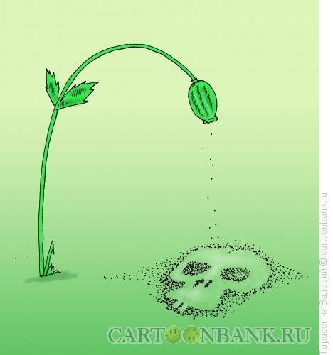 Карикатура: Опиумный мак, Тарасенко Валерий