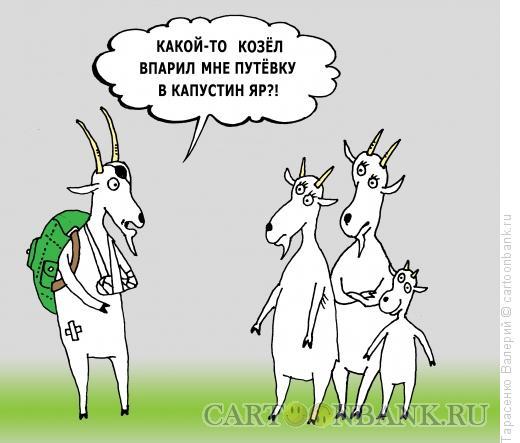 Карикатура: Капустин яр, Тарасенко Валерий