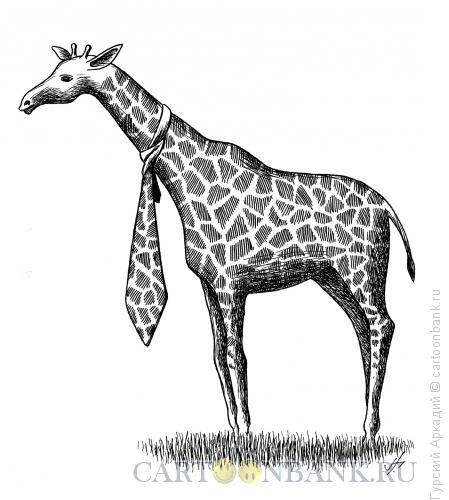 Карикатура: жираф с галстуком, Гурский Аркадий