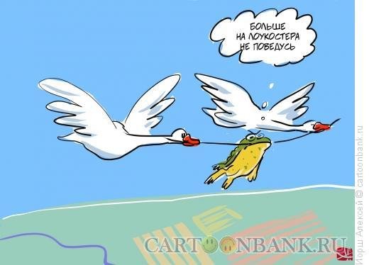 Карикатура: Лягушка-путешественница, Иорш Алексей