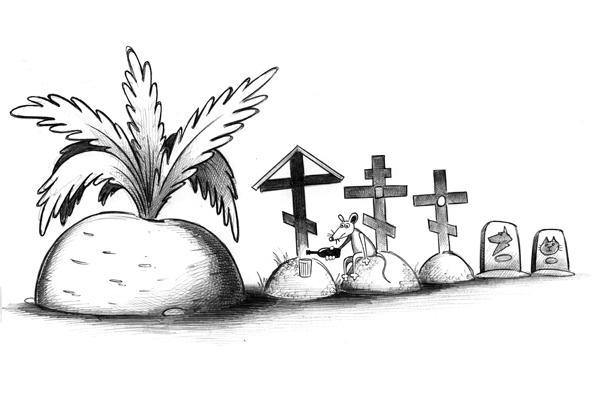 Карикатура: Репка, Сергей Корсун
