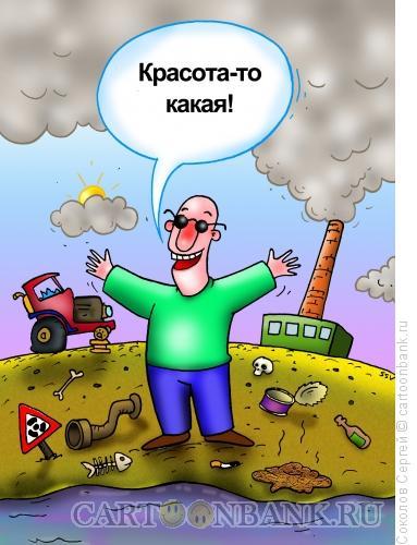 Карикатура: красота какая, Соколов Сергей