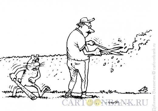 Карикатура: Садовник и заяц, Дубинин Валентин