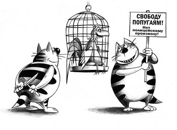 Карикатура: Свободу попугаям!, Сергей Корсун