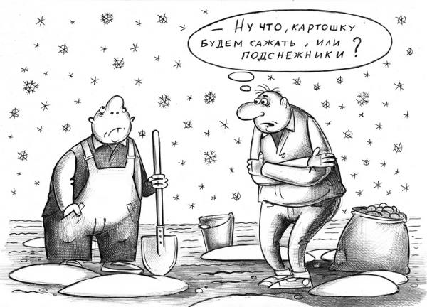 Карикатура: Что сажать?, Сергей Корсун