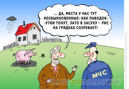 Карикатура: Природные аномалии, Тарасенко Валерий