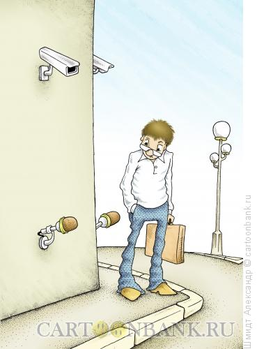 Карикатура: Система наружного слежения, Шмидт Александр
