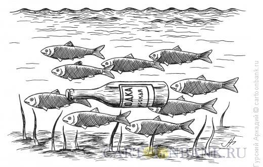 Карикатура: рыбы и бутылка, Гурский Аркадий