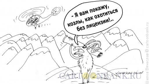 Карикатура: Козлы, Шилов Вячеслав